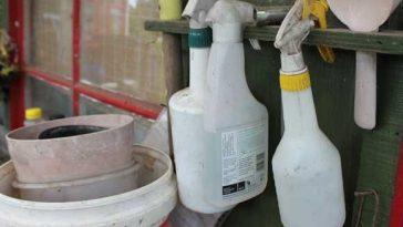bicarbonato de sódio para pragas na plantação